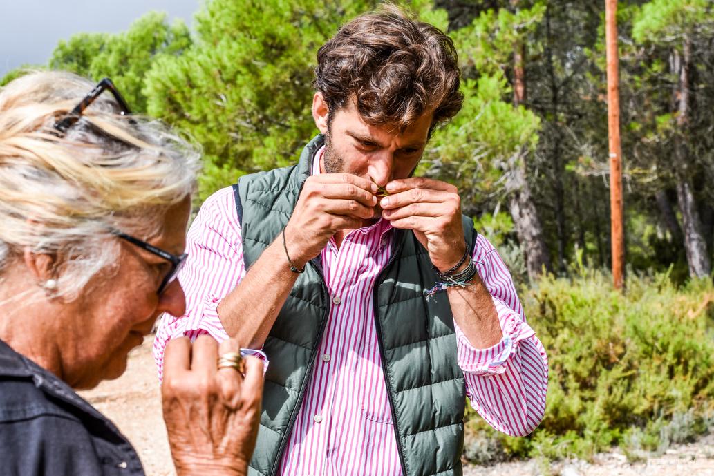 Masia el Altet, Jorge Petit, Olijfolie, Food love stories